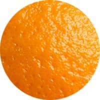 fleischgewürz orangenschale
