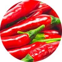 mexikanische gewürze rote chilis