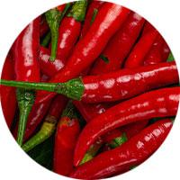 orientalische-gewürzmischung-chilis