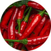grillgewürz-chilli